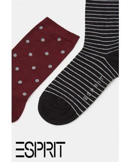 Lot de 5 paires de chaussettes fantaisie coton ESPRIT